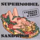 Terence Trent D´Arby-Supermodel Sandwich, 2012, Acryl/Leinwand/Karton, 60x60cm